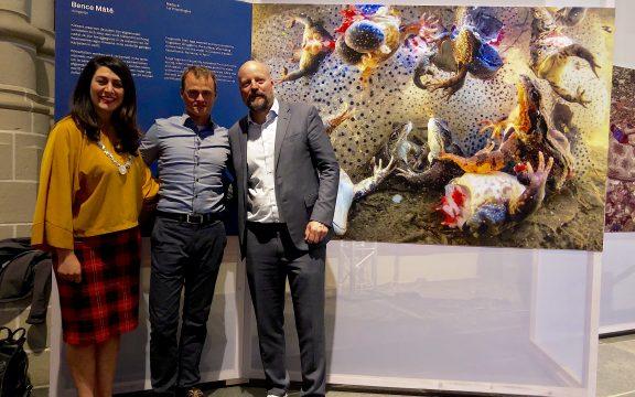 Máté Bence képe nyerte a World Press Photo természetfotó kategóriáját