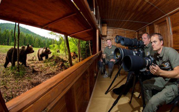 Máté Bence: A fotózás nyaralás – Természetfotósként felhívja a figyelmet arra, mit kell megvédenünk
