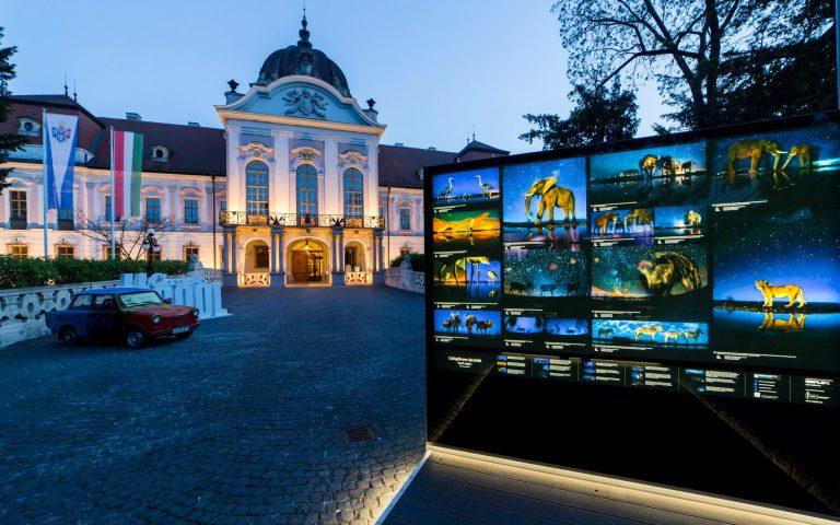 Nemzetközi Természetfilm Fesztivál lesz május végén Gödöllőn